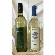 【ふるさと納税】RA6 おすすめ白ワイン2本セット【1P】