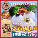 【ふるさと納税】B170【無洗米】さがびより5kg《マイスタ