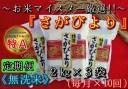 【ふるさと納税】B155【定期便】無洗米『さがびより』2kg