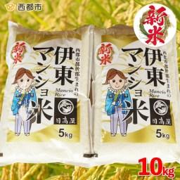 【ふるさと納税】伊東マンショ米 31年産 新米コシヒカリ10