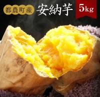 【ふるさと納税】都農町産『安納芋』5kg