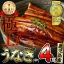 【ふるさと納税】鹿児島県大隅産!うなぎの蒲焼き4尾<計520