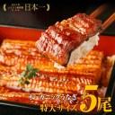 【ふるさと納税】「泰正オーガニック(横山さんの鰻)特大5尾」