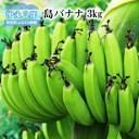 【ふるさと納税】沖永良部島の懐かしの味「島バナナ」3kg