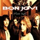 Bon Jovi ボン ジョヴィ / These Days (2枚組 / 180グラム重量盤レコード) 【LP】