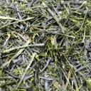 伊勢茶田舎仕立て緑茶150g