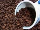 石焼焙煎コーヒー石焼コーヒーブレンド(500g) コーヒー豆:【RCP】【HLS_DU】