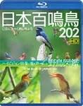 【送料無料】シンフォレストBlu-ray 日本百鳴鳥 202 HD ハイビジョン