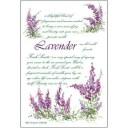 アロマサシェ ラベンダー[Fresh Scents]フレッシュセンツフレグランス・芳香剤