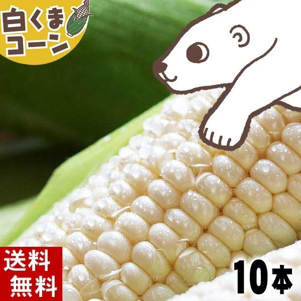 (送料無料)白いとうもろこし 旭山動物園白くまコーン 白いトウモロコシが10本入り(北海道スイートコーン ピュアホワイト