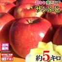 送料無料 訳あり 葉とらず 味極み りんご 減農薬 長野県産 小布施 産地直送 約5キロ