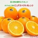 カリフォルニア産ピュアスペクトオレンジ10玉 約2kgネーブ