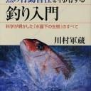 魚の行動習性を利用する釣り入門 科学が明かした「水面下の生態」のすべて