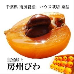 千葉県南房総産 皇室献上『房州びわ』ハウス栽培 3Lサイズ1