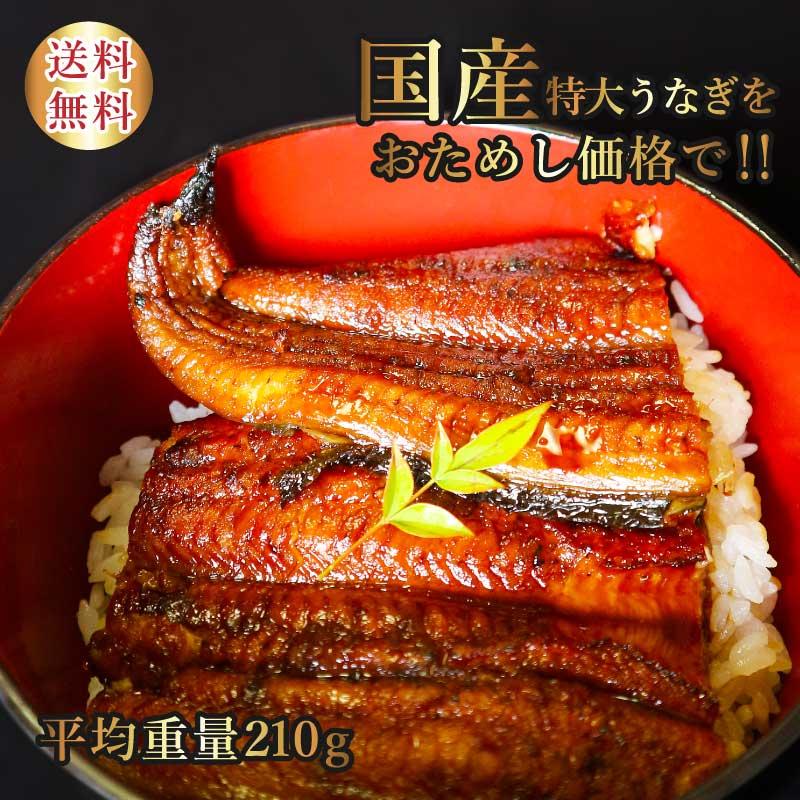 国産うなぎ お試しセット 父の日 ギフト 内祝 お取り寄せ 蒲焼き 丑の日 鹿児島鰻 送料無料 高級