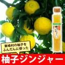 【東峰村名産品】柚子ジンジャー 3本セット