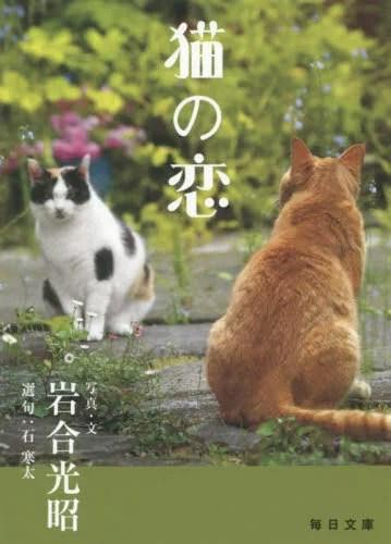 猫の恋 (毎日文庫)[本/雑誌] / 岩合光昭/写真・文 石
