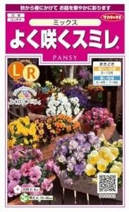 サカタのタネ パンジー よく咲くスミレ ミックス 【郵送対応】