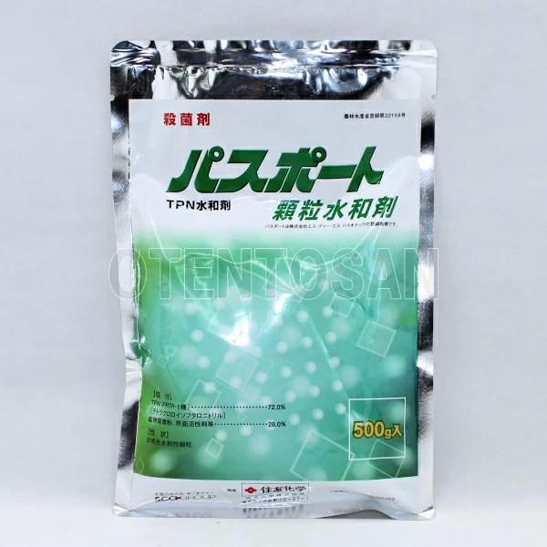 ブドウの晩腐病対策【散布時期や農薬・予防方法を解説】 478