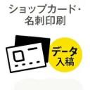 300枚■【名刺 オンデマンド印刷】 アートポスト180kg/納期1日/カラー/モノクロ