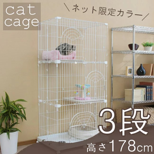 初めて猫を飼うのに必要なもの~猫を迎える準備~