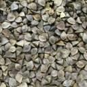 玄蕎麦 10kg[中国産][小鳥][鳩][えさ][飼料用][そばの実]