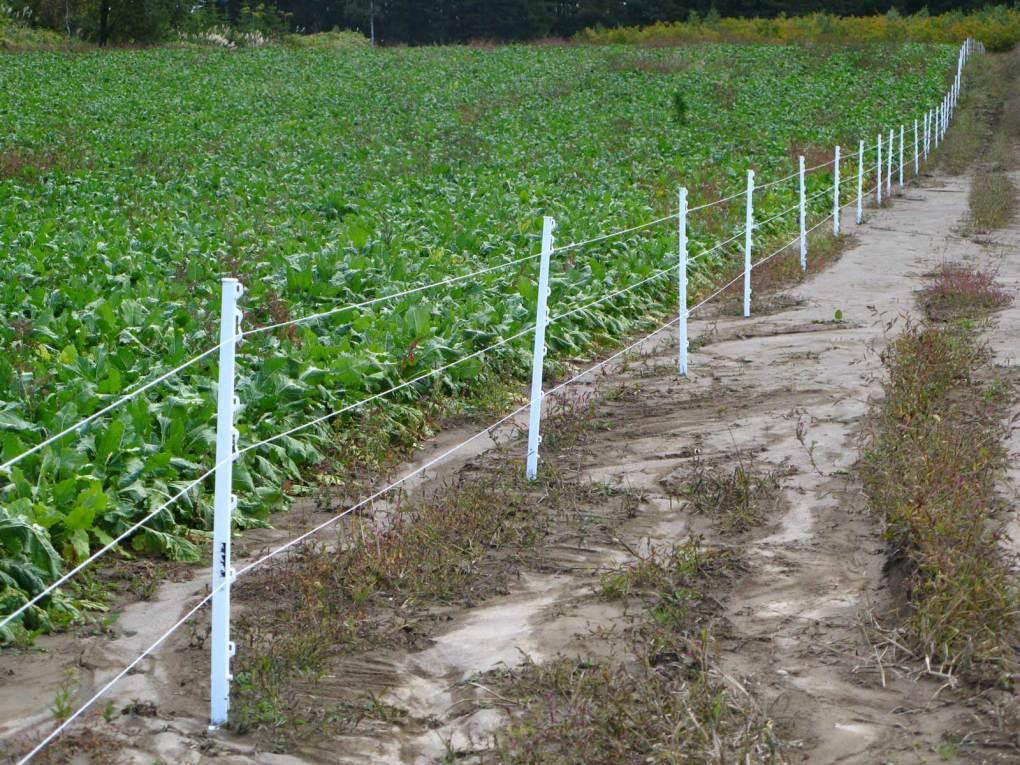 【ハクビシン・アライグマ対策】強力電気柵と電気柵の周辺部品6選 26