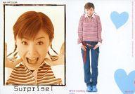 【中古】コレクションカード(ハロプロ)/トレーディングカード 松浦亜弥 Pink monkey card No.032 ...