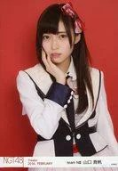 【中古】生写真(AKB48・SKE48)/アイドル/NGT48 山口真帆/バストアップ/劇場トレーディング生写真セット2016.February