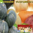 北海道富良野産 プレミアム野菜セット10品目入り 【送料無料】【お歳暮にも対応可】【RCP】【10P03Dec16】