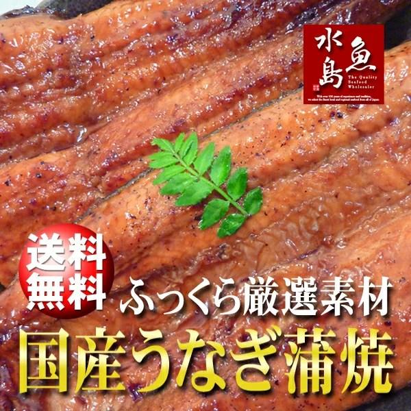 【送料無料】国産 鰻うなぎ蒲焼き ふっくら厳選素材 約30cm特々大 約200g×3尾 父の日ギフト
