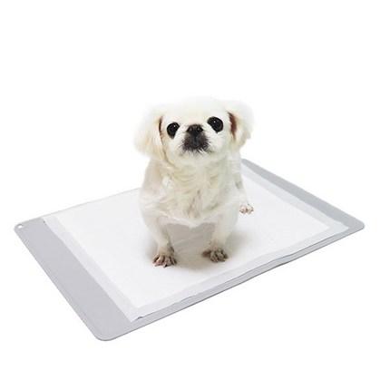 브라더펫 논슬립 강아지 방수 배변매트, 1개, 그레이
