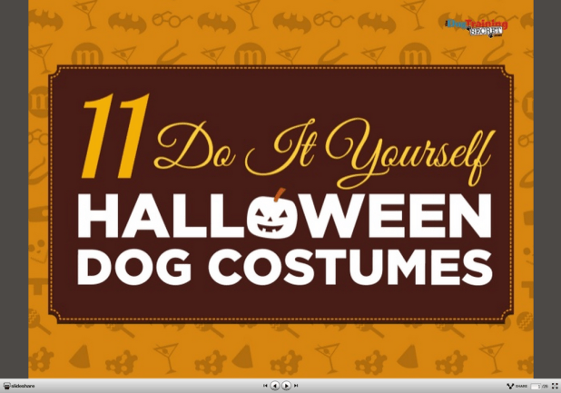 Easy do it yourself dog halloween costumes cartoonview 11 creative diy dog costumes you can make in time for halloween solutioingenieria Image collections