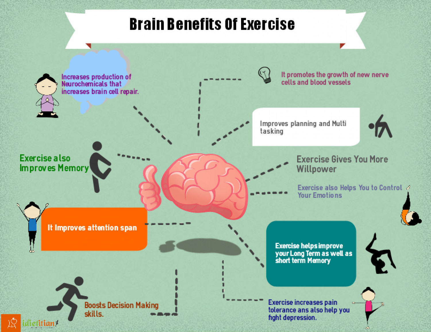 Brain Benefits Of Exercise   Visual.ly