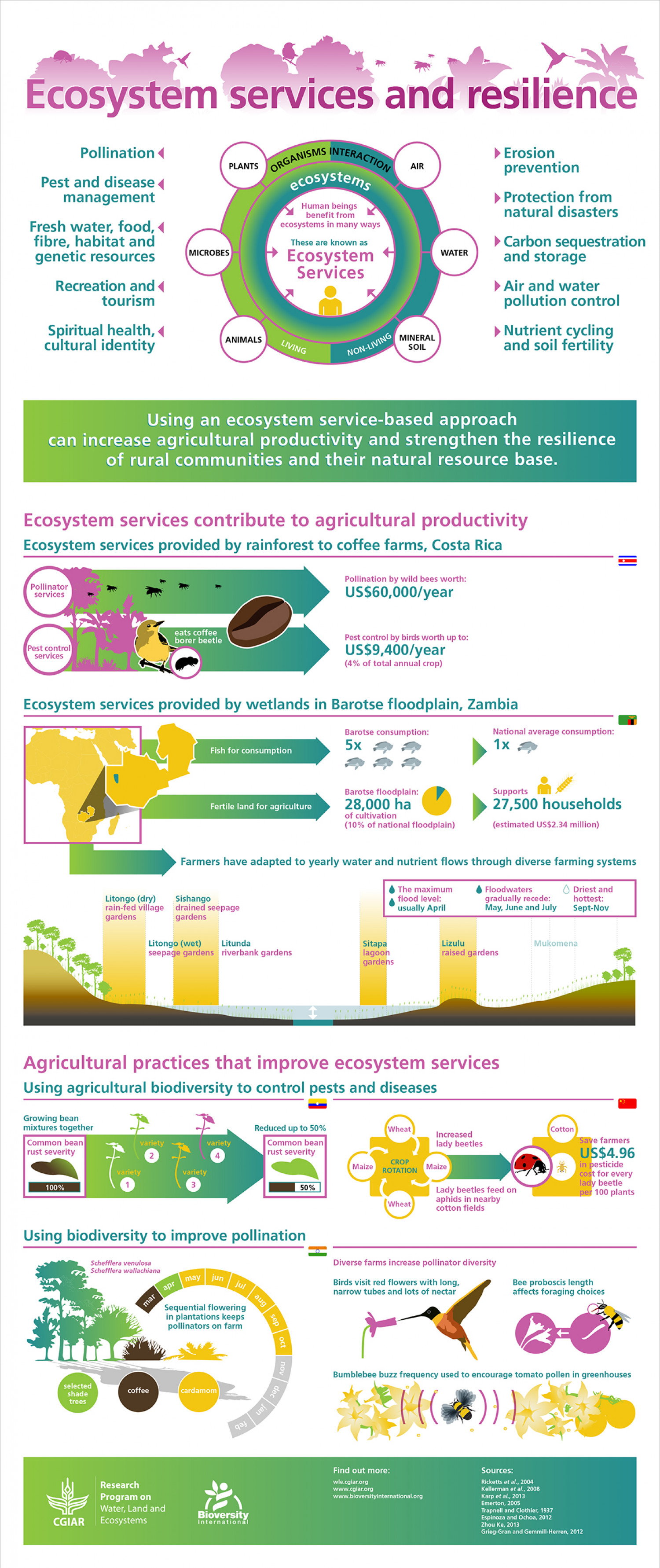 Ecosystem Services And Resilience Visual Ly