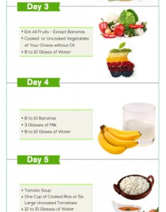 Gm diet how to lose weight in days infographic also plans infographics visual rh