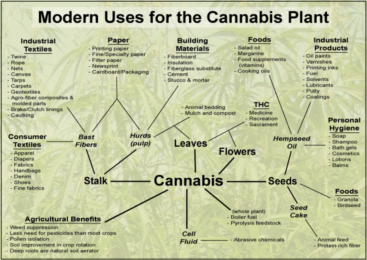 diagram of modern periodic table industrial wiring symbols uses for the cannabis plant | visual.ly