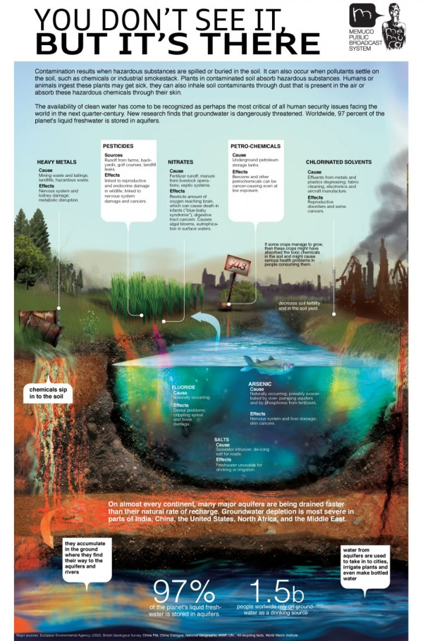 Effects of Water Pollution Infographic