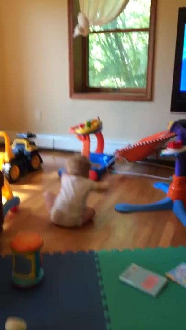 baby dancing jukin media
