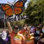 Trump Administration Will Reject New Daca Applicants The