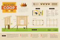 How to Build A Chicken Coop | Visual.ly