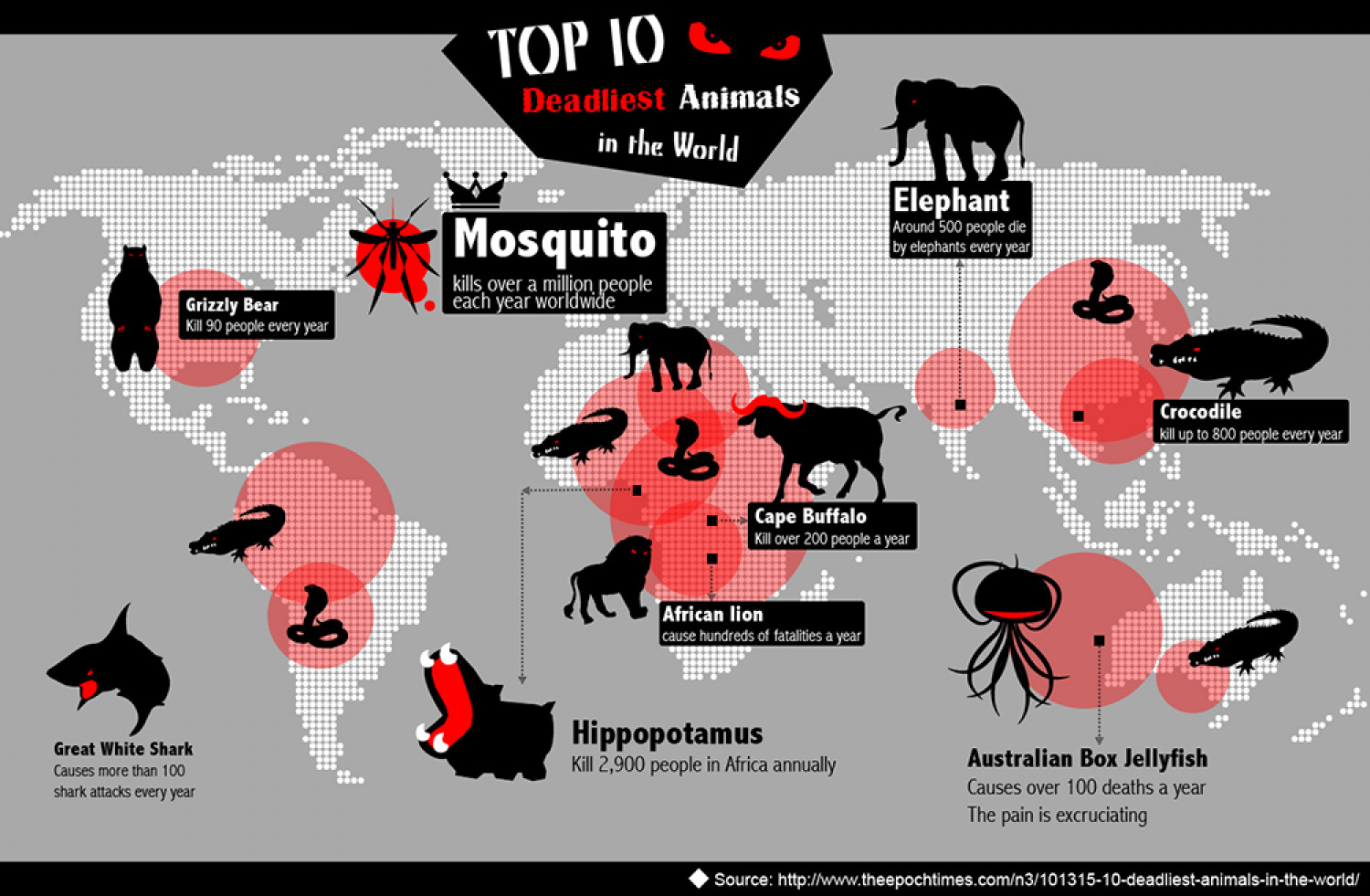 Top 10 deadliest animals in the world Infographic