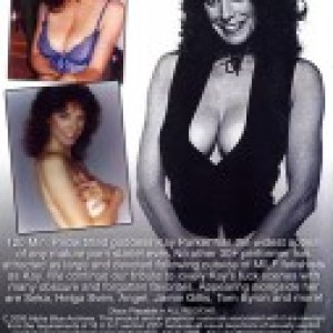 Big Tit Superstars Of The 80's: Kay Parker Collection 3 – ABA [Vintage Movie] [Download]