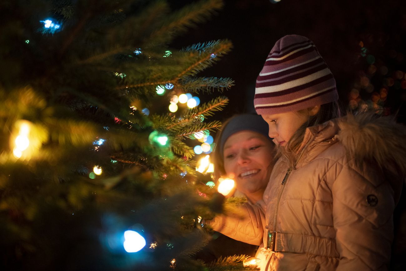 Christmas Tree Prices Are High But It S Cheap To Cut Down Your Own With A U S Forest Service Permit Oregonlive Com