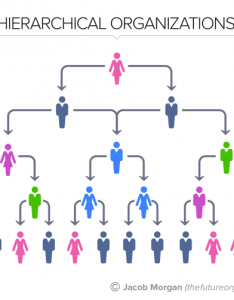 also the types of organizational structures part hierarchy rh forbes