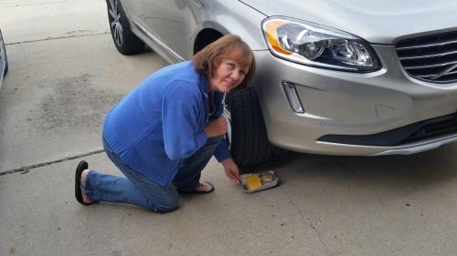 small resolution of new cars soy coated wires give rodents plenty to chew on