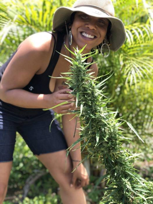 1st Lady Of The West Coast Is The First Black Woman To Have Her Own Exclusive Strain Line #Flotwckush was created 2016, #DecemberNightsOg created 2018, #BlackGirlMagicOg created 2017.