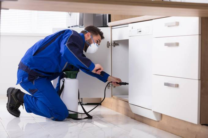 Council Post: How To Start A Successful Pest Control Company