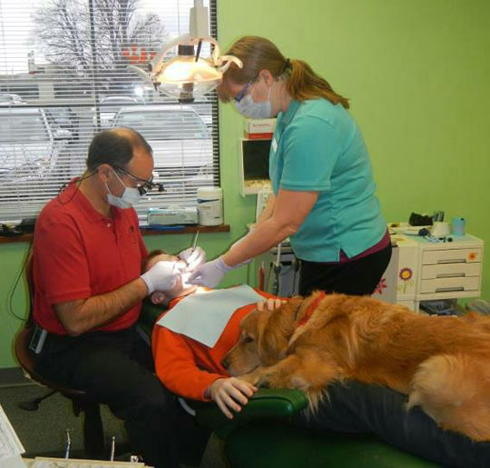 Dog helps little boy get over his fear at the dentist