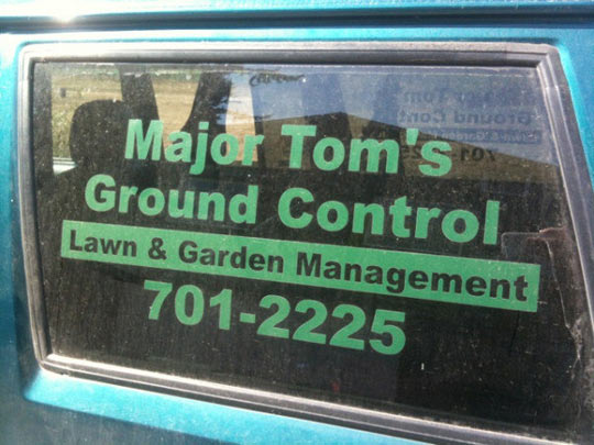 cool lawn care names
